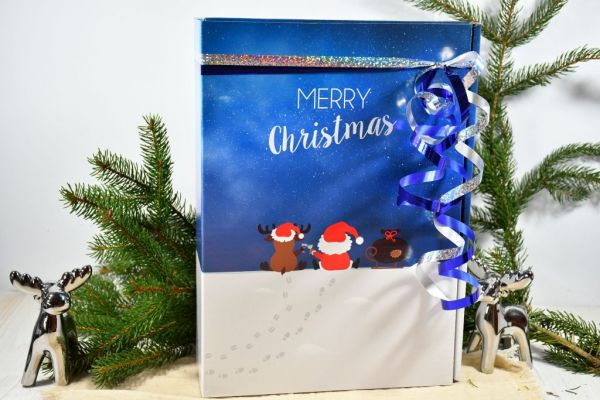 """Geschenkkarton """"Rentier + Santa"""", befüllt mit 6x Nudeln / Weihnachten"""